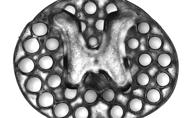A 3D printed implant serving as scaffolding to repair spinal cord injury in rats. The roughly circular implant has an H shaped core surrounded by dots—conduits through which nerve fibers can grow. Credit: Jacob Koffler and Wei Zhu, University of California, San Diego.