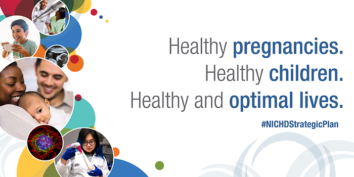 "Infocard  with NICHD's new tagline, ""Healthy pregnancies. Healthy Children. Healthy and  optimal lives."" and the #NICHDStrategicPlan hashtag on the right. On the left,  there are colorful circles with images of a rehabilitation patient and nurse, a  child eating, an ultrasound of a fetus, a biracial couple and infant,  fluorescent cell microscopy, and a female researcher pipetting in the lab."
