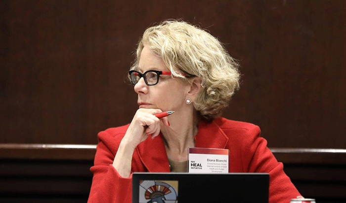 NICHD Director Dr. Diana Bianchi observes during an NIH HEAL Initiative meeting.