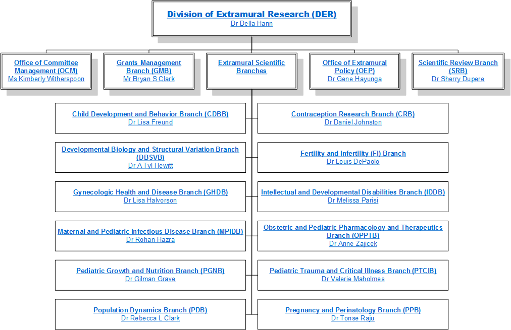 Division of extramural research der organization chart for Extra mural research