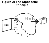 Figure 2: The Alphabetic Principle: illustration of child reading the word of bag. In the child's head are the sounds of bag and a drawing of a bag.