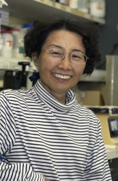 Photograph of a young Dr. Ozato smiling in her lab.
