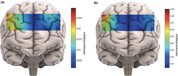 3D graphics of 2 brains are shown. In both panels, a rectangular region of the brain is colored based on millimolar/milliliter concentrations of oxyhemoglobin, which range from 0.09 (red) to 0.01 (blue).