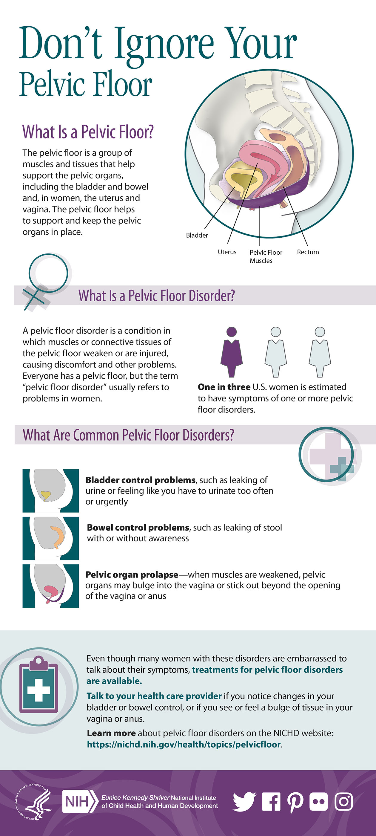 What Are Some Signs Of Learning Disabilities Nichd Eunice Nih >> Infographic Don T Ignore Your Pelvic Floor Nichd Eunice Kennedy