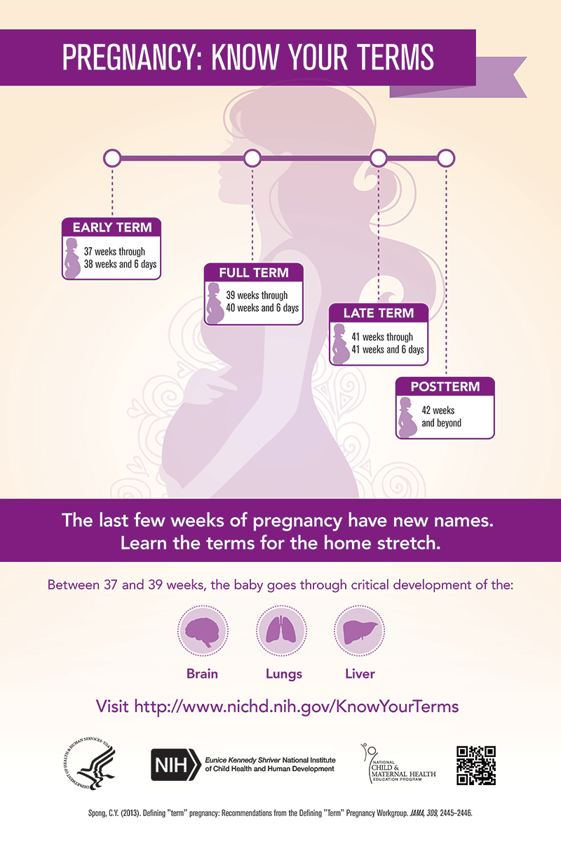 Poster - Pregnancy: Know Your Terms