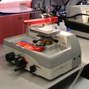 Leica Sliding Microtome in the MIC sample preparation lab.