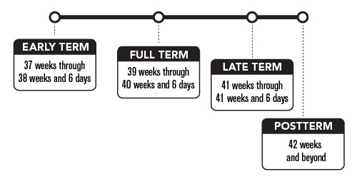 Early term is 37 weeks through 38 weeks and 6 days. Full term is 39 weeks through 40 weeks and 6 days. Late term is 41 weeks through 41 weeks and 6 days. Postterm is 42 weeks and beyond.