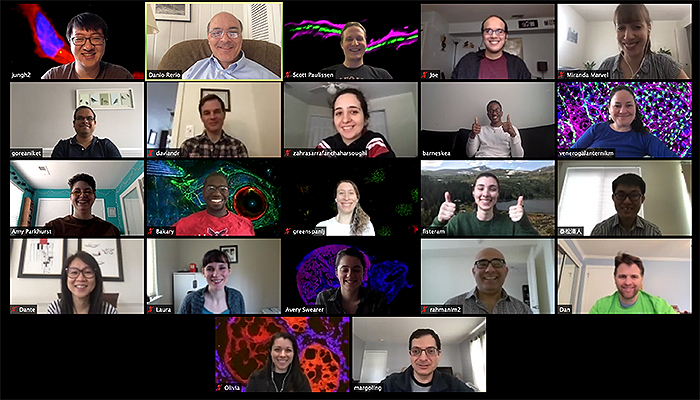 Weinstein Lab group photo - virtual meeting, March 27, 2020
