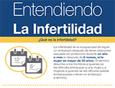 Infographic: Entendiendo la infertilidad