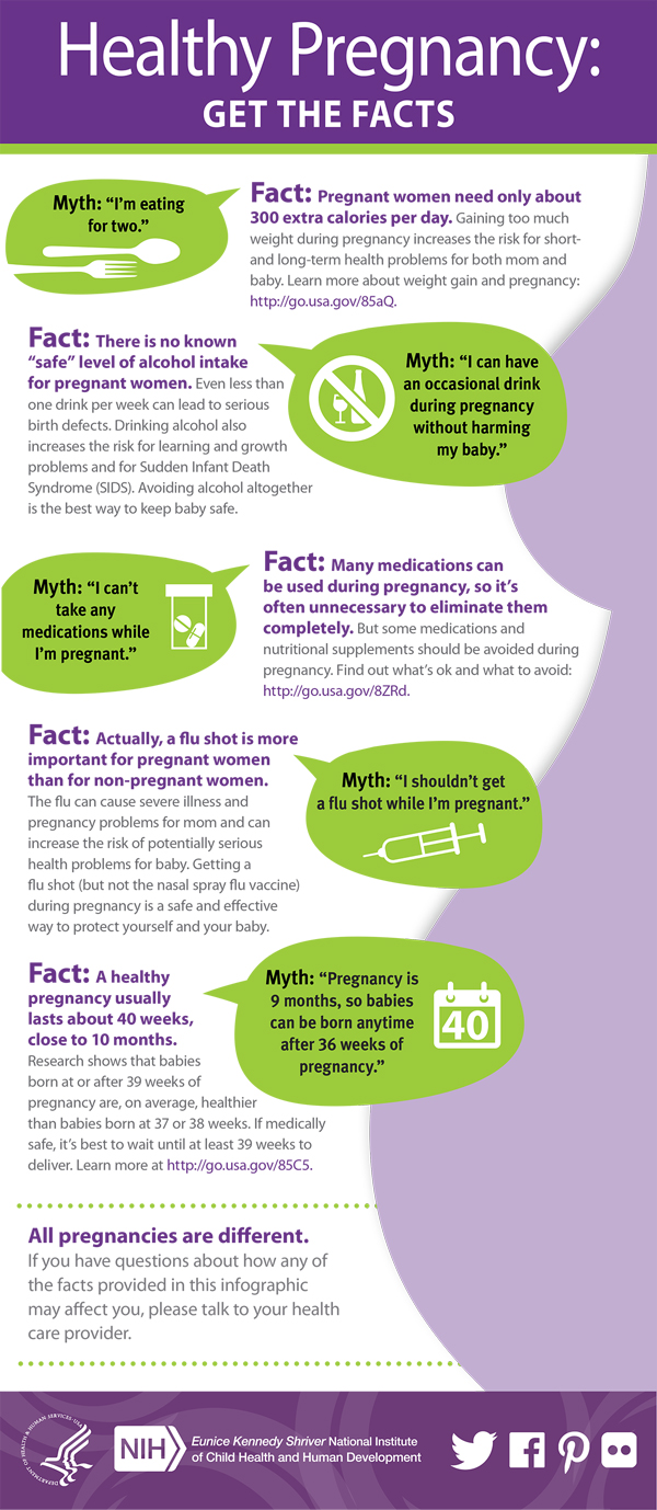 Infographic: Pregnancy Myths