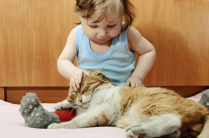 Young Girl Petting Cat