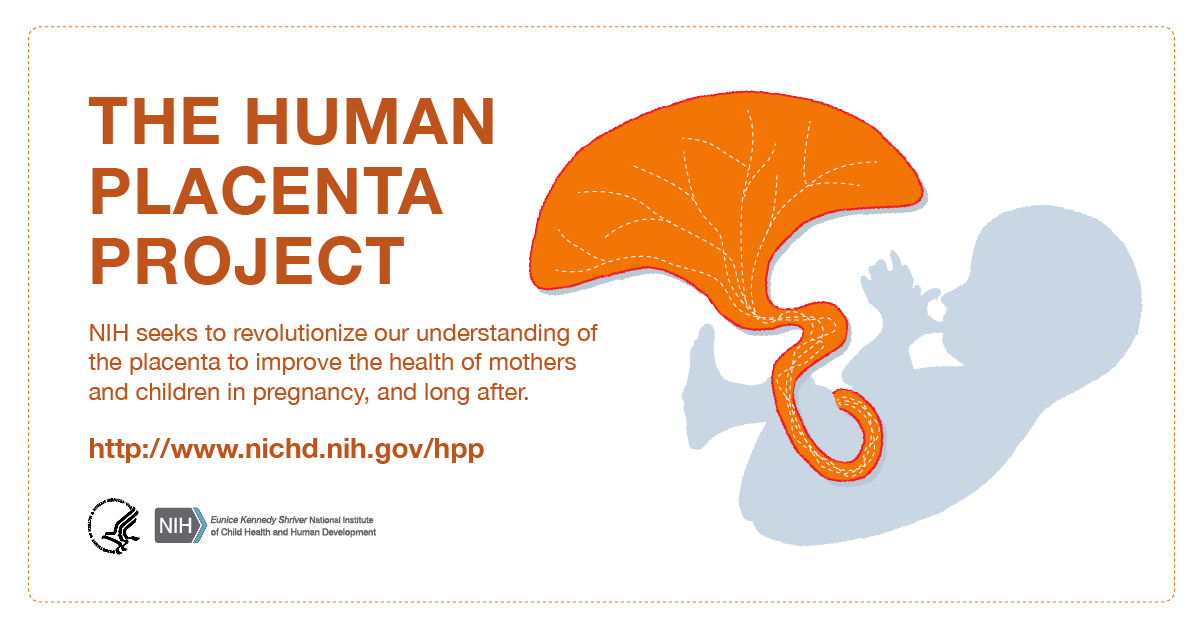 human placenta project social media items